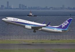 雲霧さんが、羽田空港で撮影した全日空 737-881の航空フォト(飛行機 写真・画像)