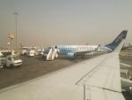 イミドスさんが、カイロ国際空港で撮影したエジプト航空 エクスプレス ERJ-170-100 LR (ERJ-170LR)の航空フォト(写真)
