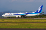 PASSENGERさんが、静岡空港で撮影した全日空 737-8ALの航空フォト(写真)