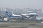 どんちんさんが、伊丹空港で撮影した全日空 787-8 Dreamlinerの航空フォト(写真)