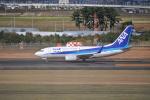 フレアー350さんが、仙台空港で撮影した全日空 737-781の航空フォト(写真)