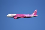 kumagorouさんが、仙台空港で撮影したピーチ A320-214の航空フォト(写真)