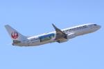 キイロイトリさんが、伊丹空港で撮影した日本トランスオーシャン航空 737-8Q3の航空フォト(写真)