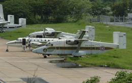 hs-tgjさんが、ドンムアン空港で撮影したタイ王国陸軍 330UTTの航空フォト(飛行機 写真・画像)