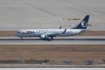 OMAさんが、仁川国際空港で撮影した山東航空 737-8HXの航空フォト(飛行機 写真・画像)