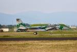 ふくそうじさんが、新田原基地で撮影した航空自衛隊 F-15DJ Eagleの航空フォト(写真)