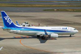 delawakaさんが、羽田空港で撮影した全日空 737-8ALの航空フォト(写真)