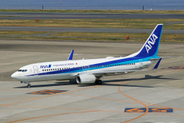 delawakaさんが、羽田空港で撮影した全日空 737-881の航空フォト(写真)