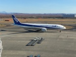 737dolphinさんが、新千歳空港で撮影した全日空 777-281の航空フォト(写真)