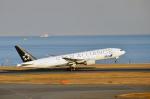 Co-pilootjeさんが、羽田空港で撮影した全日空 777-281の航空フォト(飛行機 写真・画像)