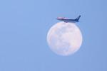 hisappiさんが、伊丹空港で撮影した全日空 737-54Kの航空フォト(写真)