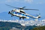 くれないさんが、高松空港で撮影した海上保安庁 EC225LP Super Puma Mk2+の航空フォト(写真)