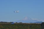 kuma3736さんが、静岡空港で撮影した全日空 737-881の航空フォト(写真)