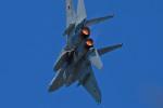 スカルショットさんが、岐阜基地で撮影した航空自衛隊 F-15DJ Eagleの航空フォト(写真)