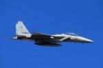 Wasawasa-isaoさんが、岐阜基地で撮影した航空自衛隊 F-15DJ Eagleの航空フォト(写真)