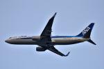 we love kixさんが、関西国際空港で撮影した全日空 737-8ALの航空フォト(飛行機 写真・画像)