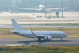 23Skylineさんが、羽田空港で撮影したロイヤル・ジェット 737-7AK BBJの航空フォト(飛行機 写真・画像)