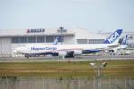 JAXXさんが、成田国際空港で撮影した日本貨物航空 747-8KZF/SCDの航空フォト(写真)