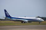 まーちらぴっどさんが、静岡空港で撮影した全日空 737-881の航空フォト(写真)