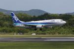 endress voyageさんが、岡山空港で撮影した全日空 737-8ALの航空フォト(写真)