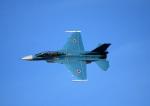 Wasawasa-isaoさんが、岐阜基地で撮影した航空自衛隊 F-2Bの航空フォト(写真)