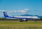 Cygnus00さんが、新千歳空港で撮影した全日空 A321-272Nの航空フォト(写真)