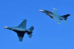 フォト太郎さんが、岐阜基地で撮影した航空自衛隊 F-2Bの航空フォト(写真)