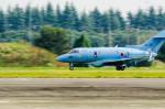 NCT310さんが、入間飛行場で撮影した航空自衛隊 U-125A(Hawker 800)の航空フォト(写真)