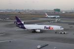 こじこじさんが、羽田空港で撮影したフェデックス・エクスプレス MD-11Fの航空フォト(写真)