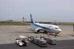 こじこじさんが、岩国空港で撮影した全日空 737-881の航空フォト(写真)