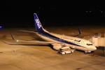 こじこじさんが、佐賀空港で撮影した全日空 737-781の航空フォト(写真)