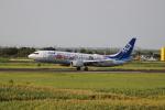 こじこじさんが、佐賀空港で撮影した全日空 737-881の航空フォト(写真)