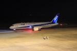 こじこじさんが、佐賀空港で撮影した全日空 787-8 Dreamlinerの航空フォト(写真)
