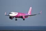 kumagorouさんが、仙台空港で撮影したバニラエア A320-214の航空フォト(写真)