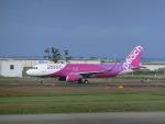 ヒロリンさんが、仙台空港で撮影したピーチ A320-214の航空フォト(写真)