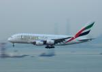 KAZKAZさんが、香港国際空港で撮影したエミレーツ航空 A380-842の航空フォト(写真)