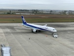 Nyankoさんが、仙台空港で撮影した全日空 767-381/ERの航空フォト(写真)
