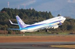 Yuseiさんが、熊本空港で撮影した全日空 737-881の航空フォト(飛行機 写真・画像)
