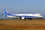 mocohide☆さんが、佐賀空港で撮影した全日空 A321-211の航空フォト(写真)