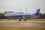 武彩航空公司(むさいえあ)さんが、函館空港で撮影した全日空 A321-272Nの航空フォト(写真)