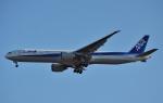 鉄バスさんが、成田国際空港で撮影した全日空 777-381/ERの航空フォト(写真)