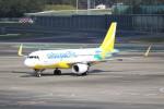 utarou on NRTさんが、成田国際空港で撮影したセブパシフィック航空 A320-214の航空フォト(写真)