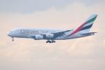 あおいそらさんが、関西国際空港で撮影したエミレーツ航空 A380-861の航空フォト(写真)