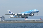 あおいそらさんが、関西国際空港で撮影した全日空 A380-841の航空フォト(写真)
