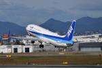 betaさんが、伊丹空港で撮影した全日空 737-881の航空フォト(飛行機 写真・画像)
