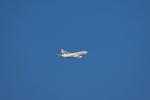 navipro787さんが、宮崎空港で撮影した日本航空 737-846の航空フォト(写真)