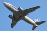 navipro787さんが、宮崎空港で撮影したANAウイングス 737-54Kの航空フォト(写真)