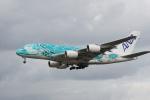 神宮寺ももさんが、成田国際空港で撮影した全日空 A380-841の航空フォト(写真)