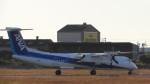 リンダさんが、松山空港で撮影したANAウイングス DHC-8-402Q Dash 8の航空フォト(写真)