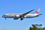 @たかひろさんが、伊丹空港で撮影した日本航空 787-8 Dreamlinerの航空フォト(写真)